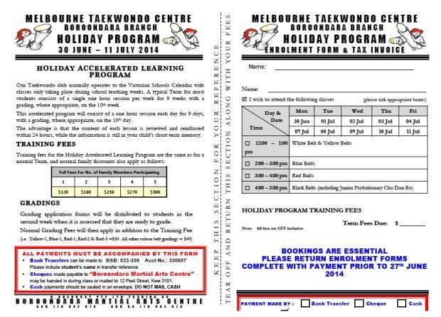 Taekwondo Holiday Program